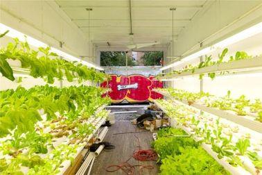 China Hogares prefabricados agrícolas hidropónicos del envase, hogares modulares movibles del envase distribuidor